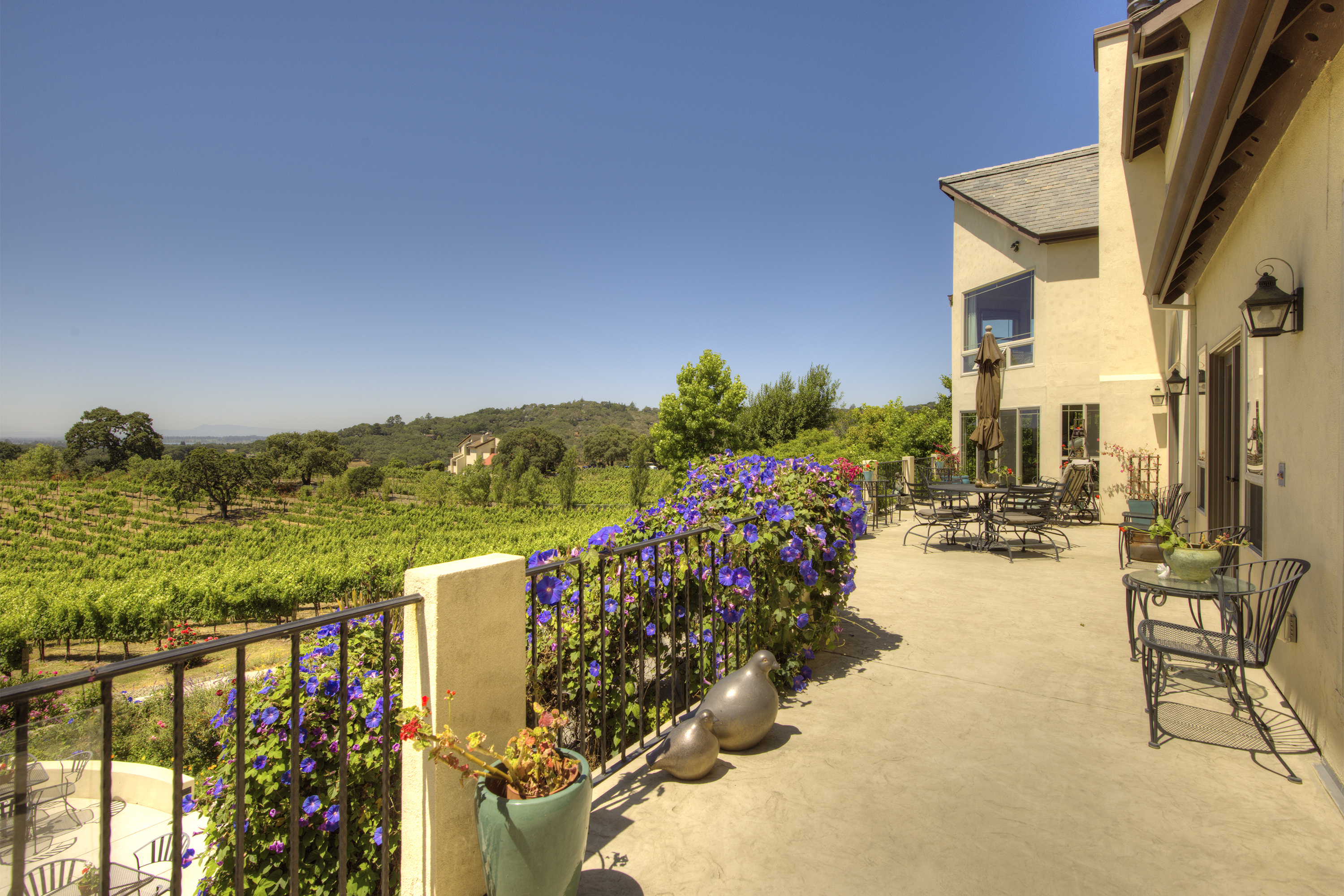 Casa Unifamiliar por un Venta en Quail Knoll Vineyards 21 Palm Drive Napa, California, 94558 Estados Unidos