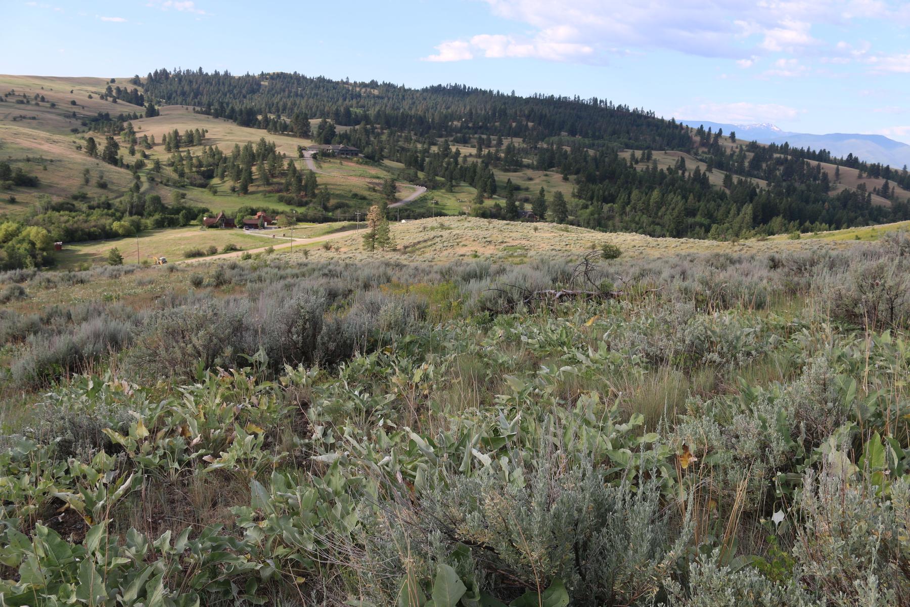 Terreno para Venda às Dougherty Ranch 0000 Butler Creek Road Missoula, Montana 59808 Estados Unidos