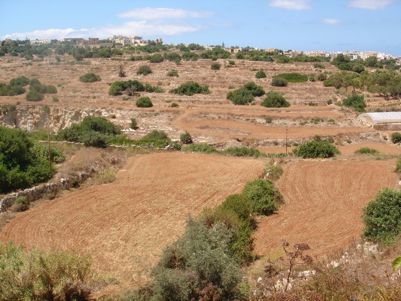 sales property at Farmland in San Gwann Valley