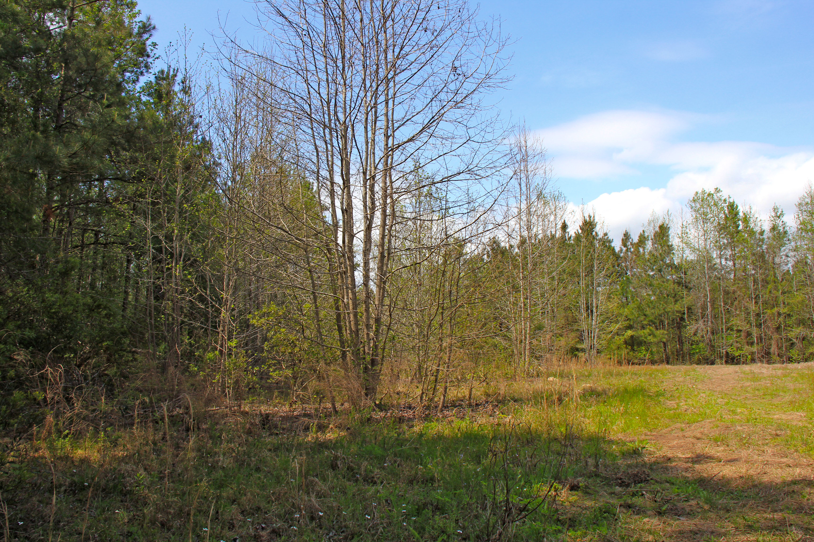 Property Of Cross Swamp