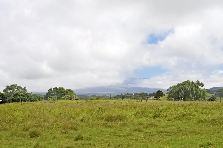 Property For Sale at 4-Acres of Pastureland on the North Shore