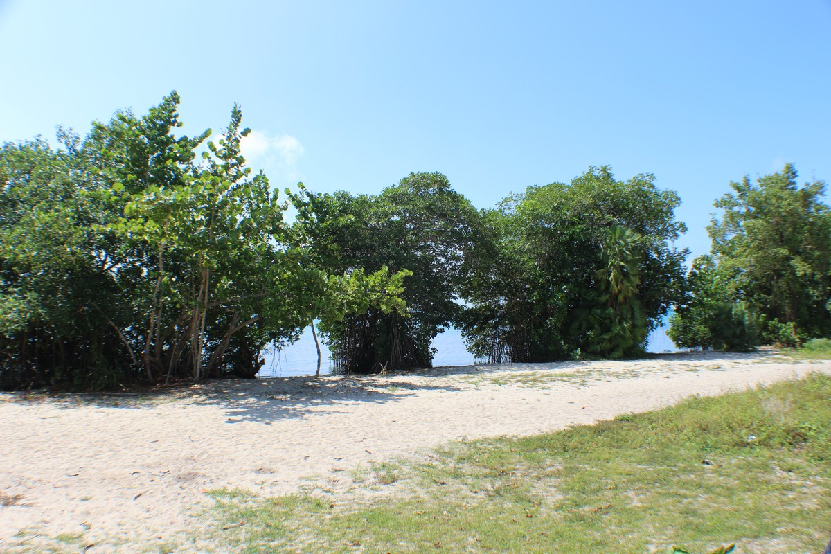 Land for Sale at LARGE BEACHFRONT ACERAGE Placencia, Stann Creek, Belize