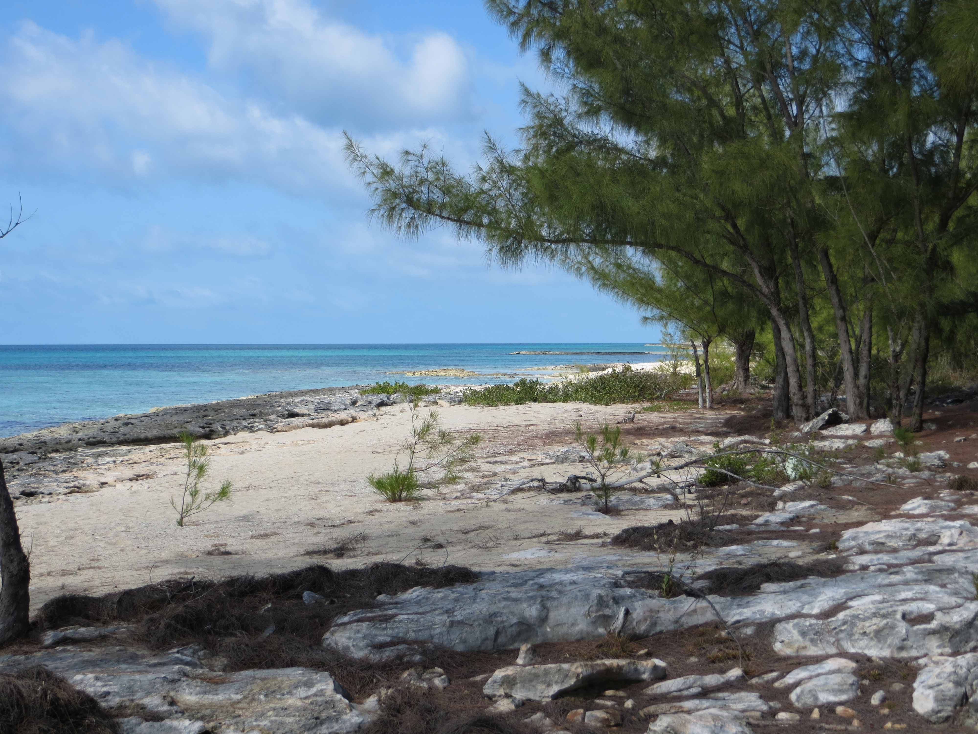 Additional photo for property listing at Hillside Splendor James Cistern, Eleuthera Bahamas