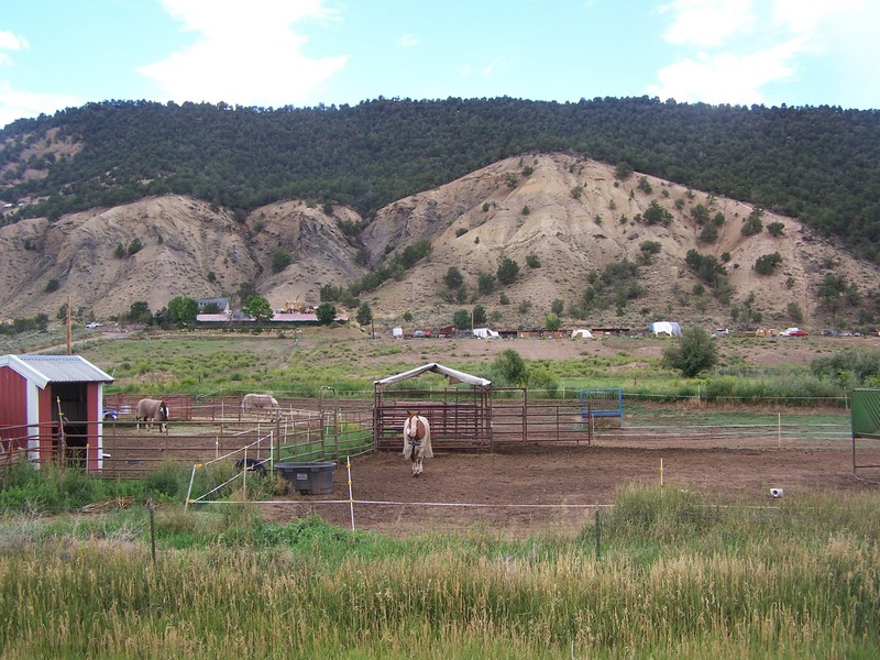 Farm / Ranch / Plantation for Sale at Kennel property 16704 Highway 82 Carbondale, Colorado 81623 United States