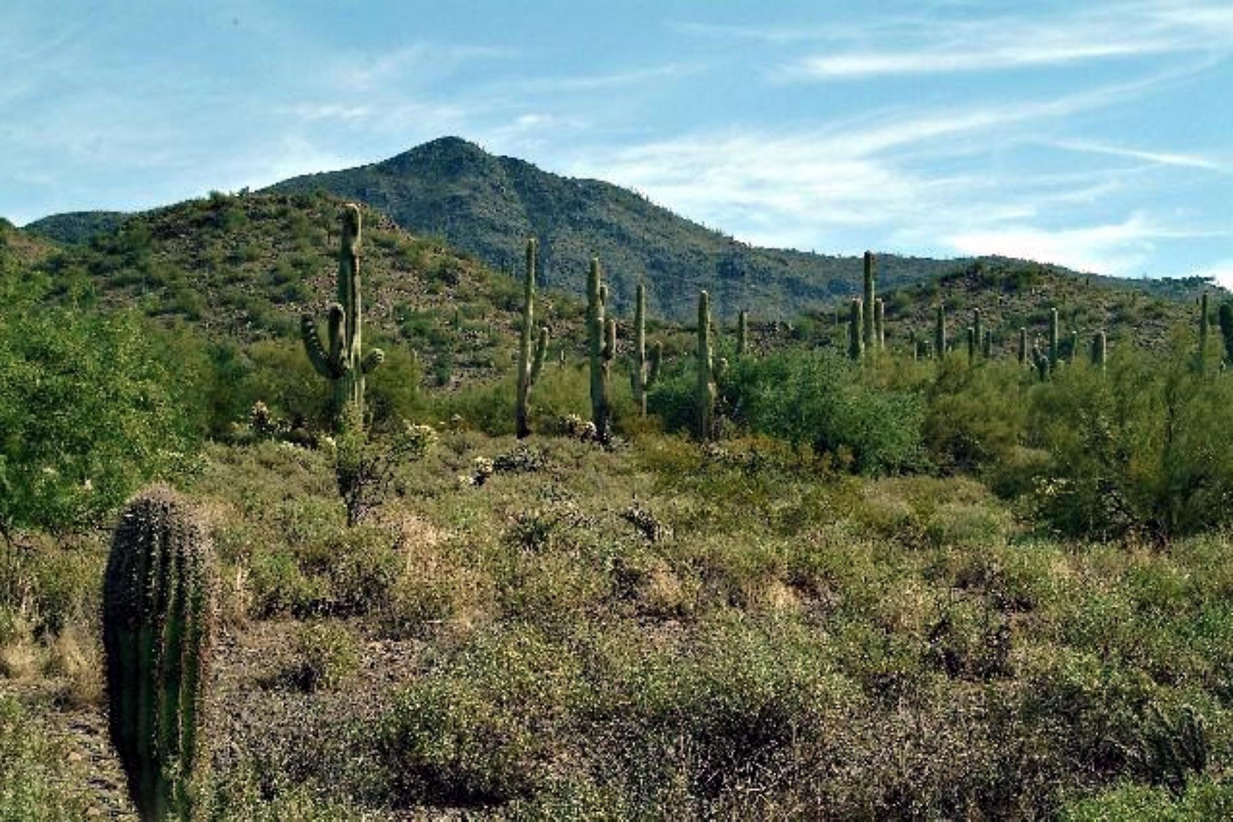 Property Of Mountain Preserve Custom Estate Lot Cave Creek, AZ