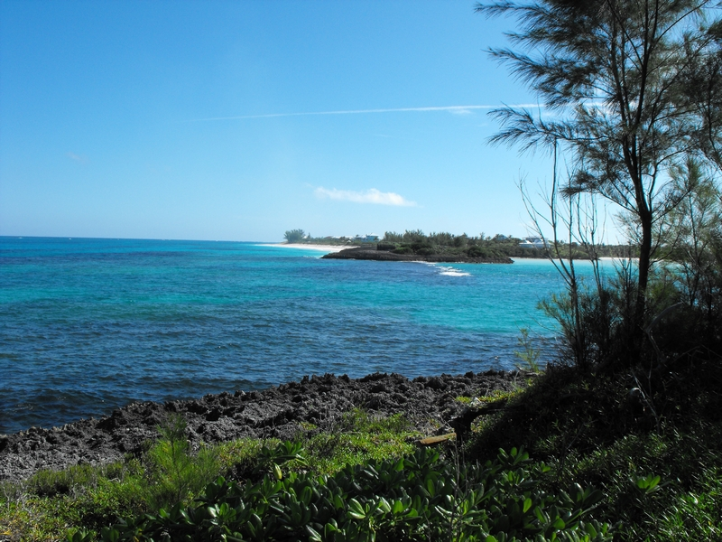 Additional photo for property listing at Dolphin Lookout Lot Guana Cay, Abaco Bahamas