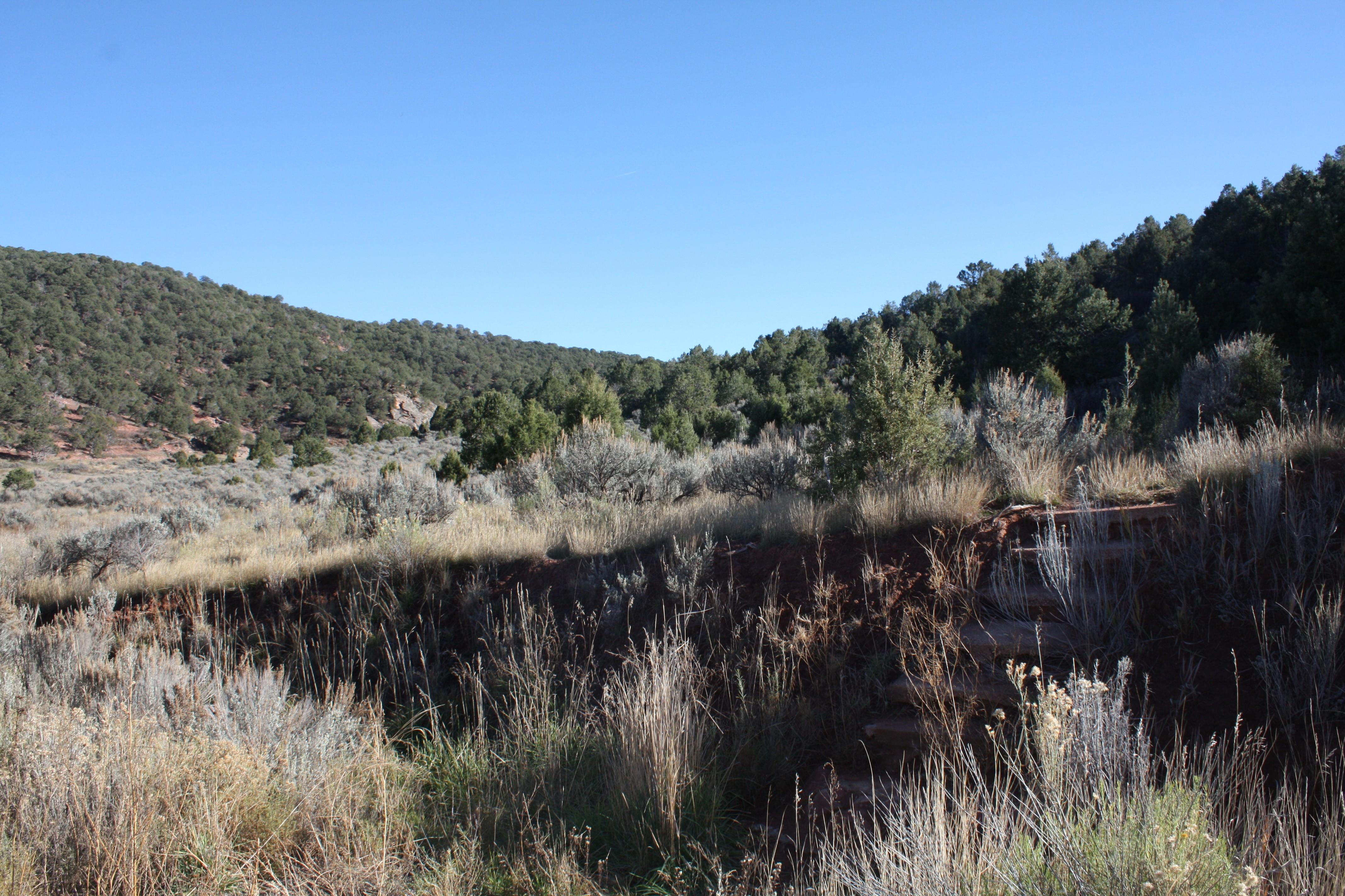 Land for Sale at Lot 63 Springridge Reserve Lot 63 Hidden Valley Glenwood Springs, Colorado, 81601 United States