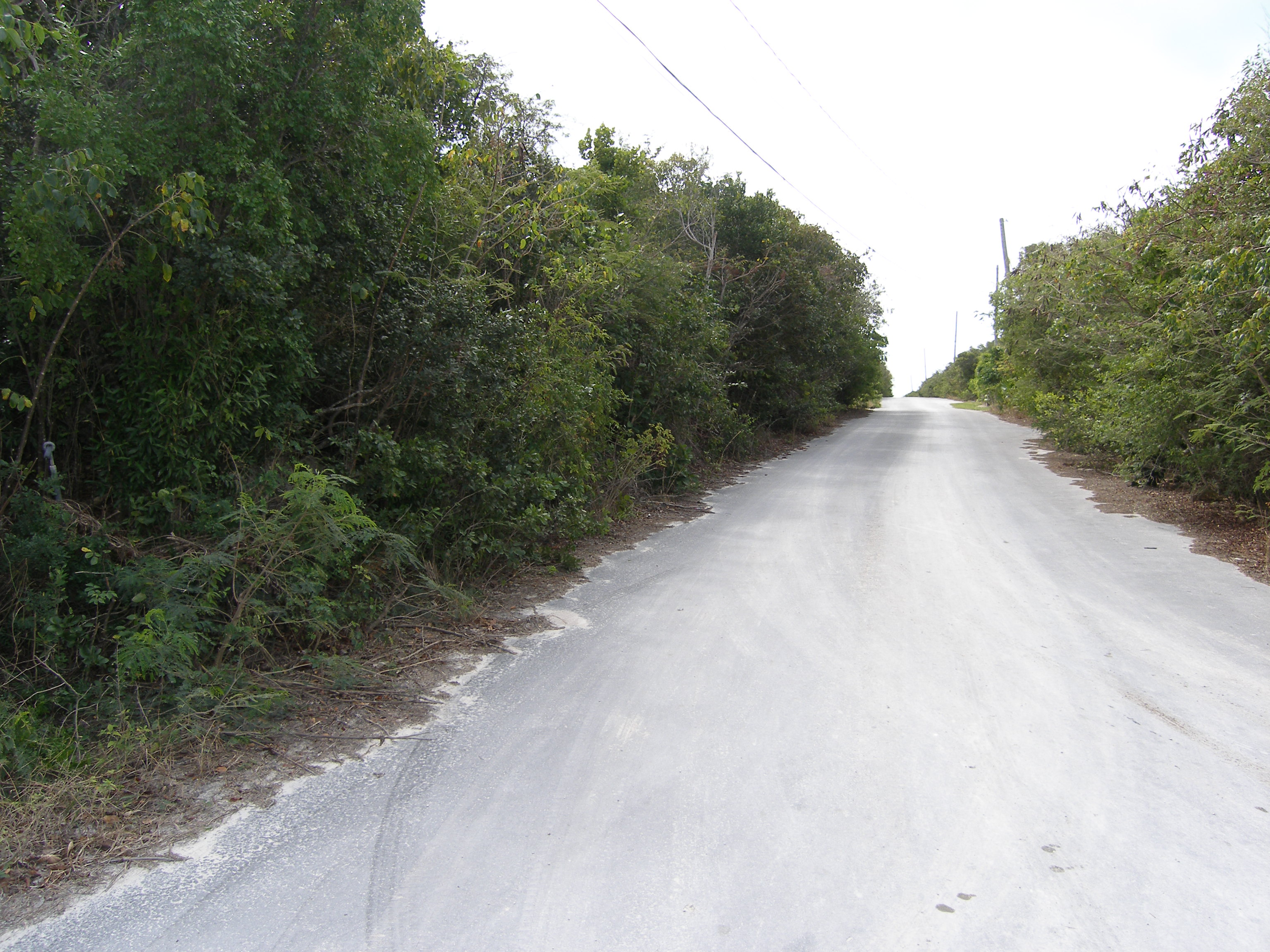 Additional photo for property listing at Eleuthera Island Shores 格里高利城, 伊路瑟拉 巴哈马