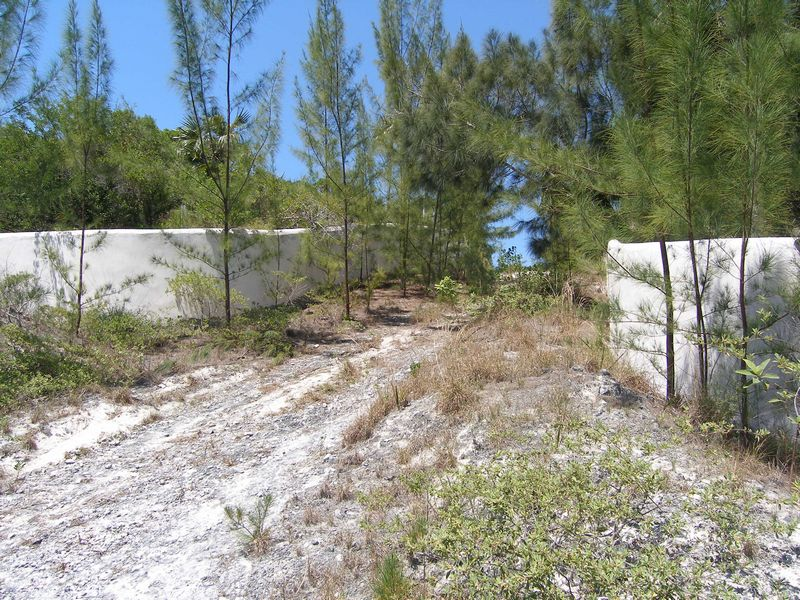 Additional photo for property listing at Waterfront Acreage Palmetto Point, Eleuthera Bahamas