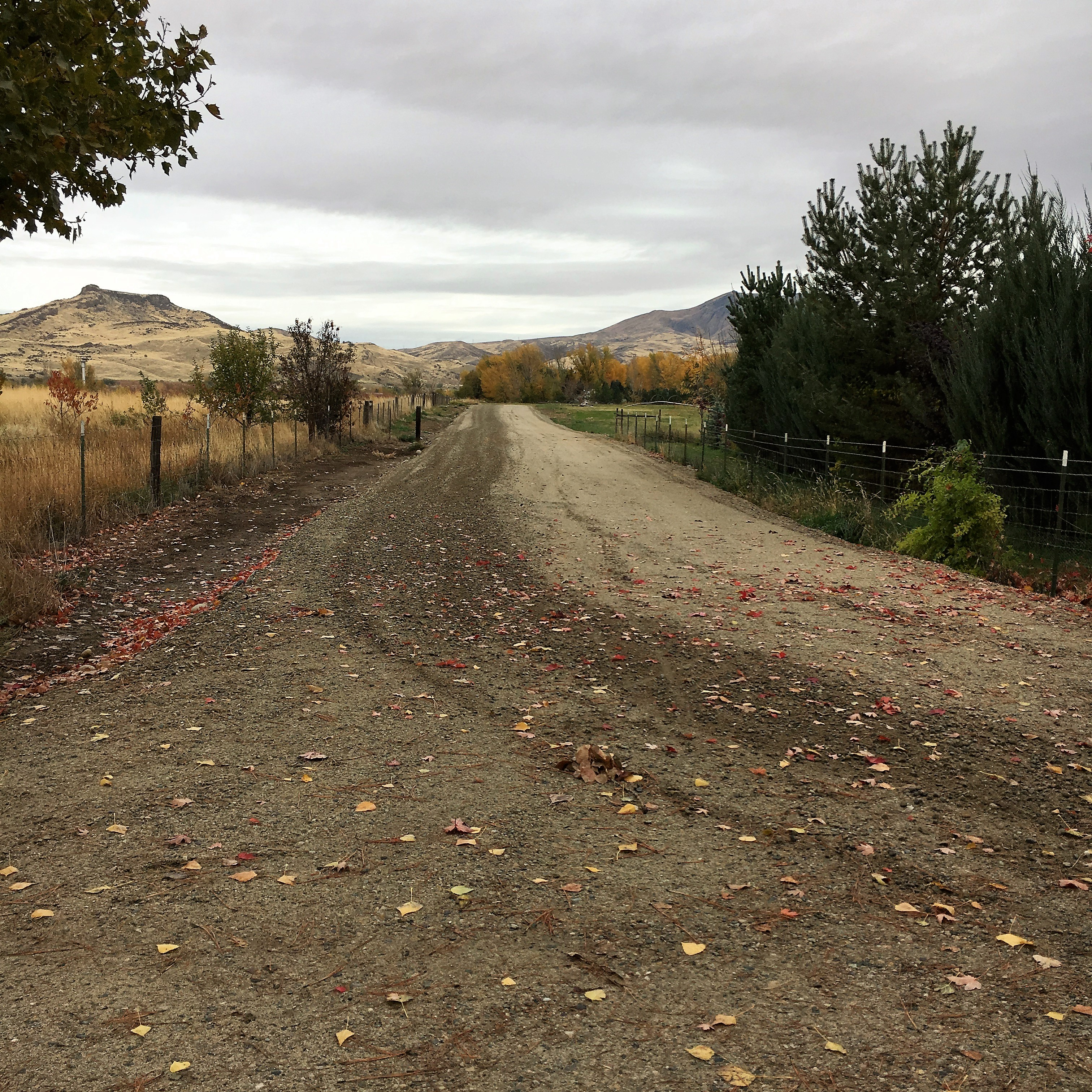 土地 のために 売買 アット TBA Wilson Lane, Emmett TBA Wilson Ln Emmett, アイダホ, 83617 アメリカ合衆国
