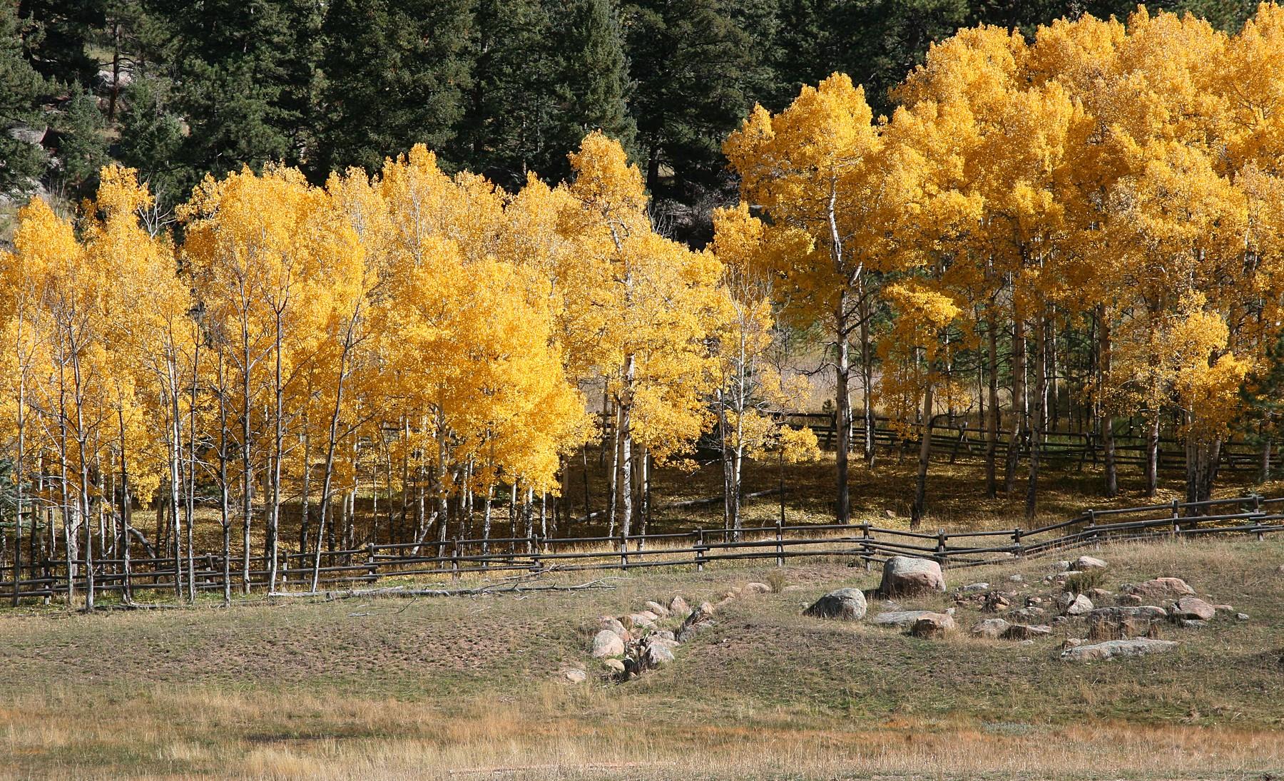 sales property at Exclusive Cub Creek Ranch Community