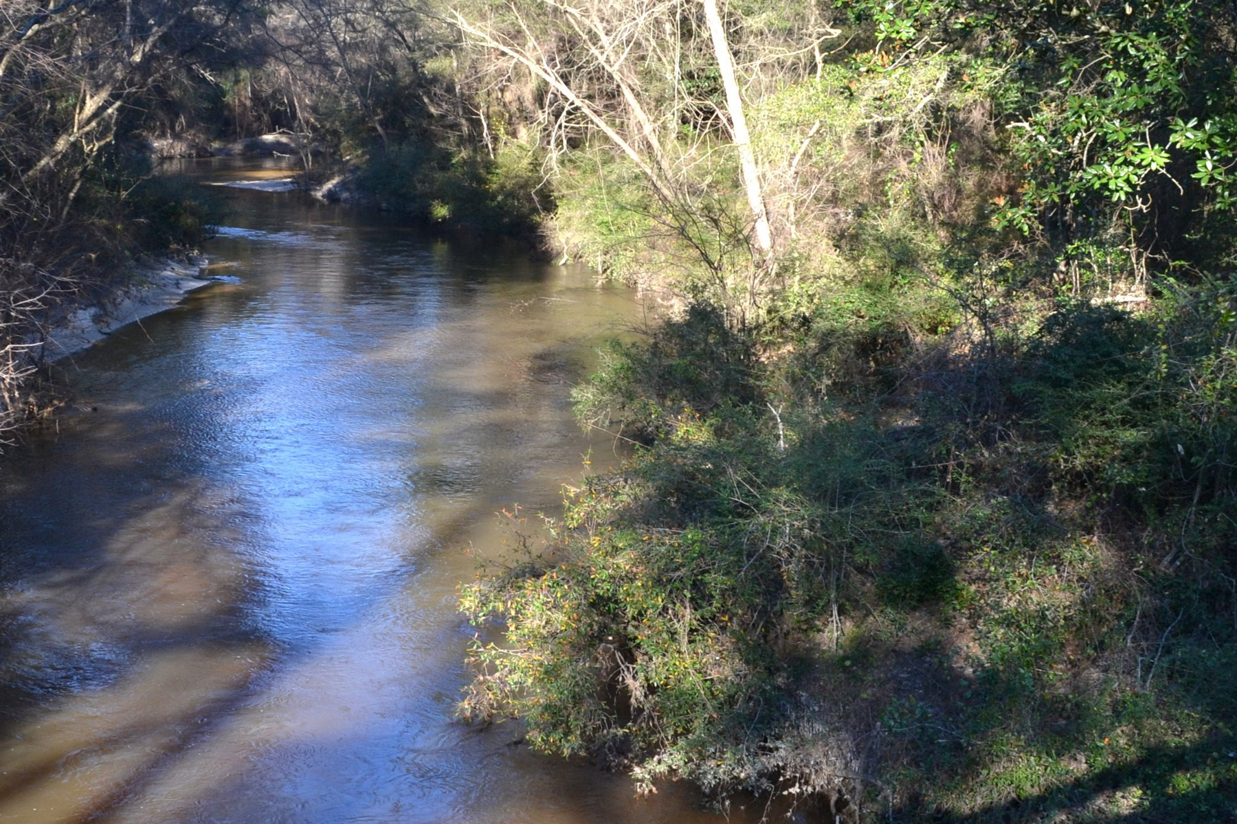 Land for Sale at 16009 Riverside Rd Covington, Louisiana 70435 United States