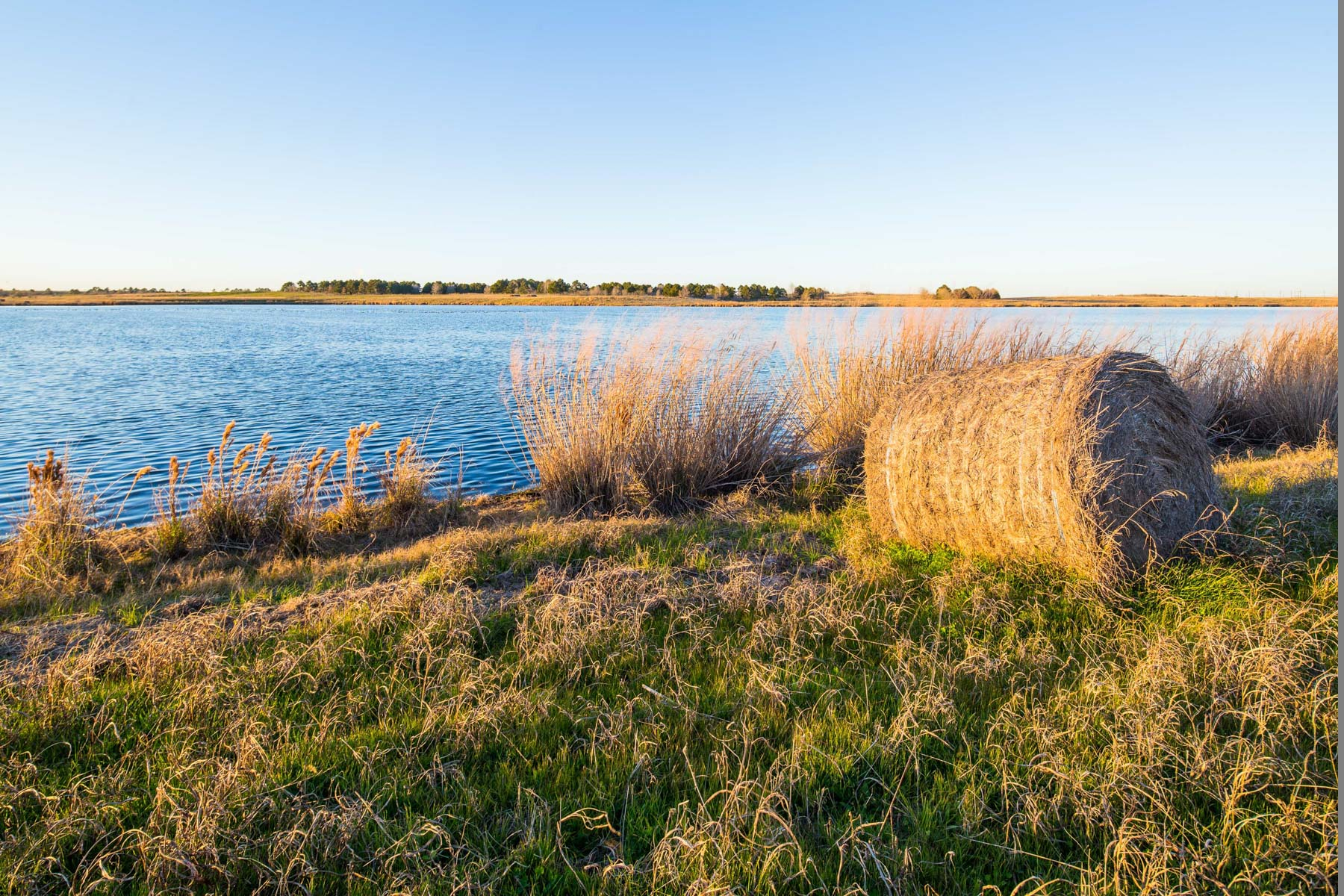 Additional photo for property listing at Sandow Lakes Ranch 3900 John D. Harper Road Rockdale, Texas 76567 États-Unis