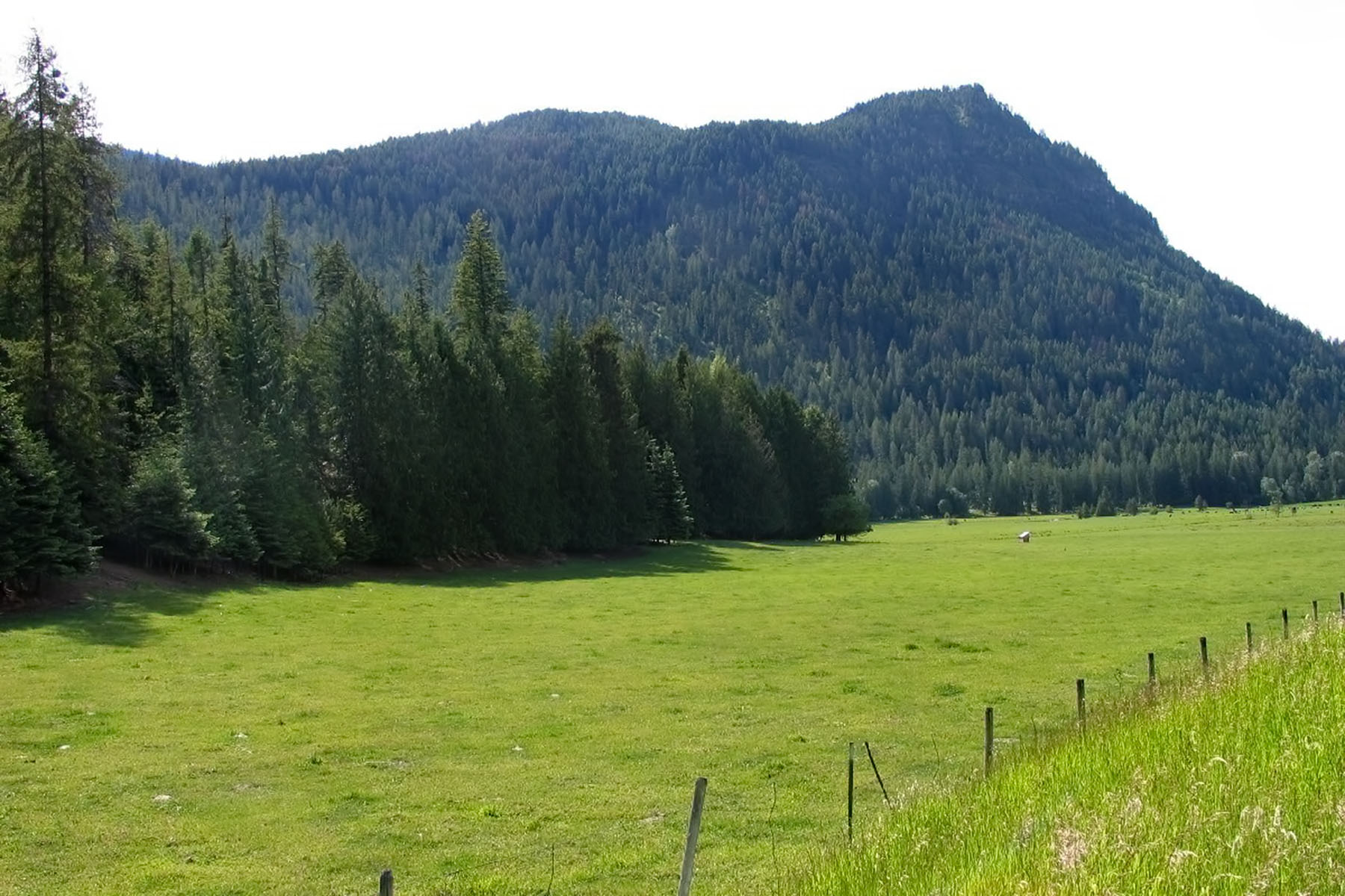 Земля для того Продажа на Historic Land Holding 1st Time Offered NNA 371 Acres River Road Clark Fork, Айдахо, 83811 Соединенные Штаты