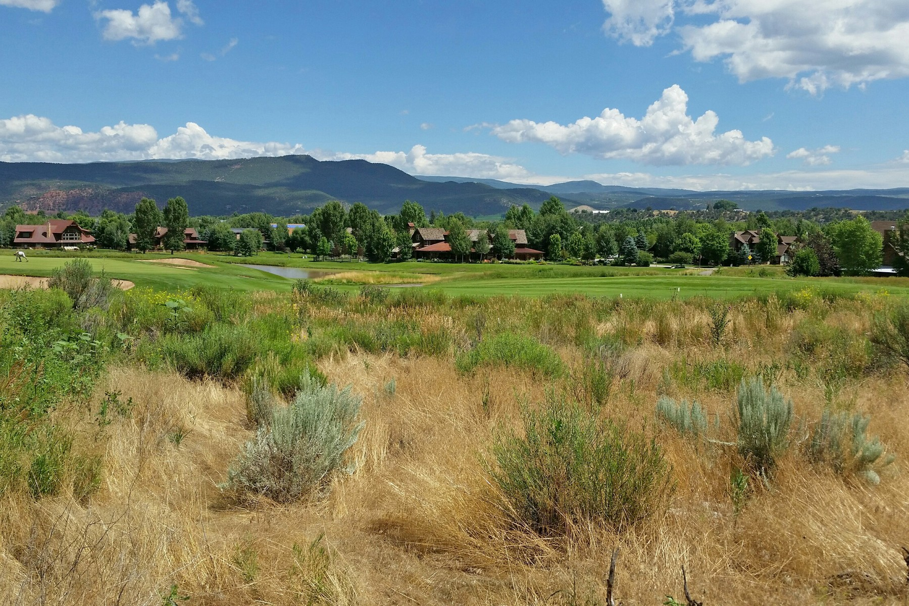 Land for Sale at River Valley Ranch 4066 Crystal Bridge Dr Carbondale, Colorado, 81623 United States
