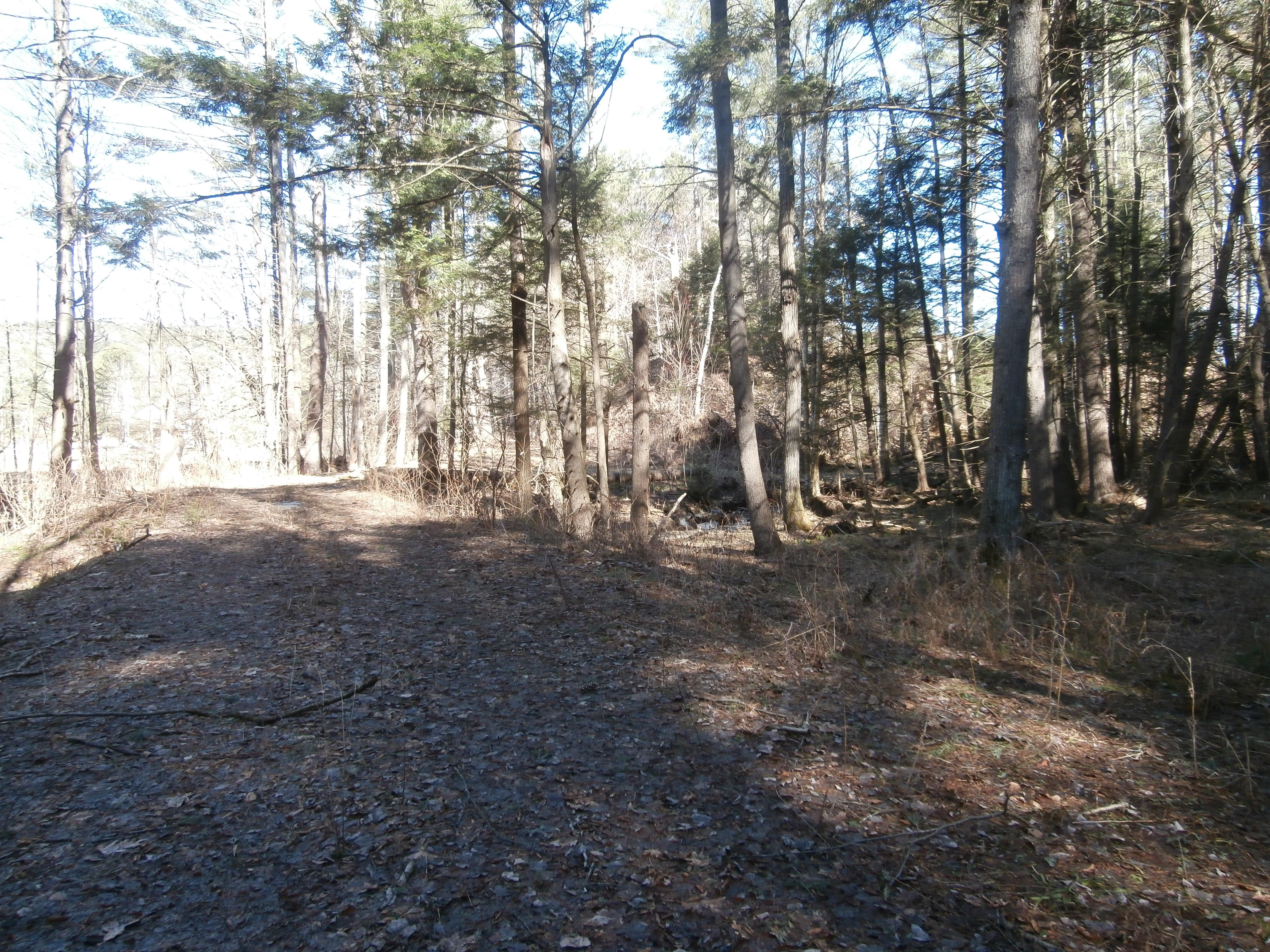 Terreno para Venda às 00-47B Nh Route 10, Orford Orford, New Hampshire 03777 Estados Unidos