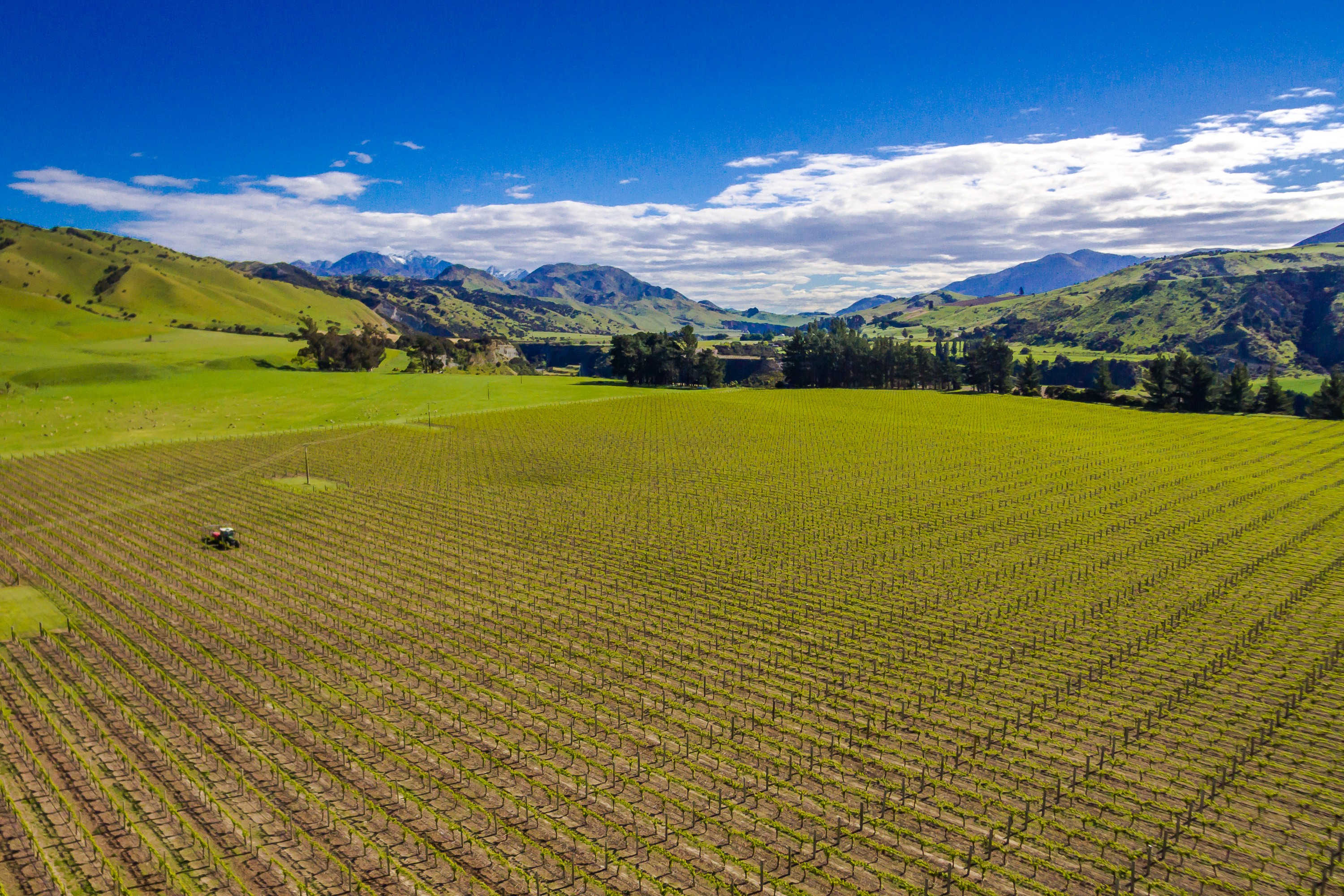 Vineyard for Sale at 35 Welds Hill Road Marlborough Sounds, Marlborough, 7274 New Zealand