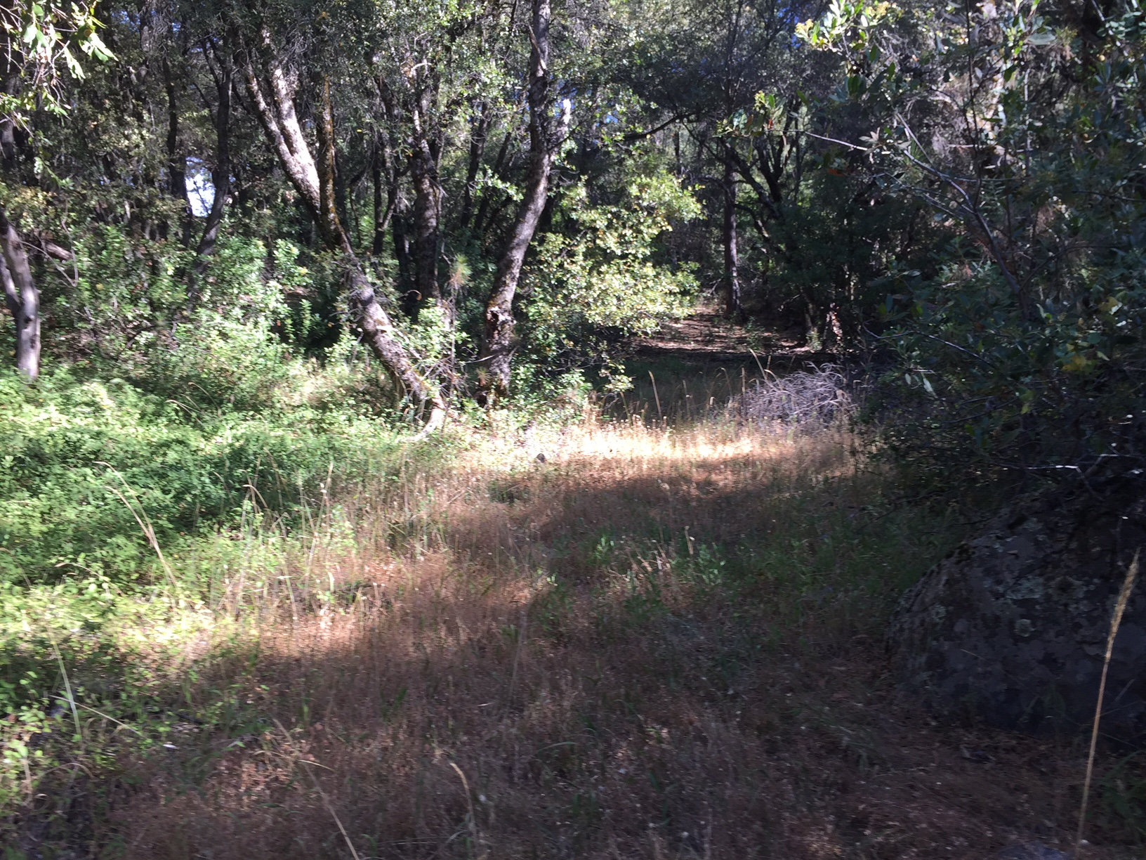 Land for Sale at PARCEL B Rock Drive Pioneer, California 95666 United States