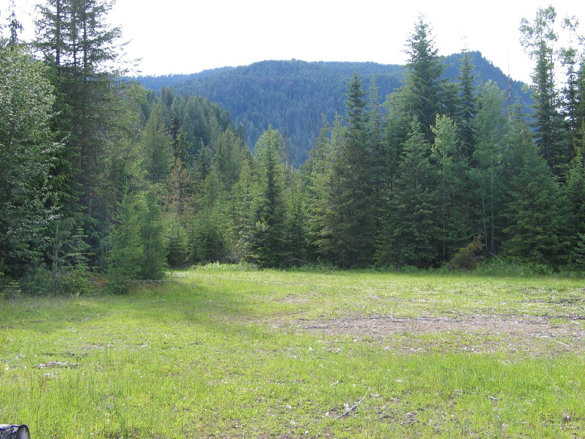 """Land for Sale at """"One of A Kind"""" 238 acre Timbered Property River Run Road Clark Fork, Idaho 83811 United States"""
