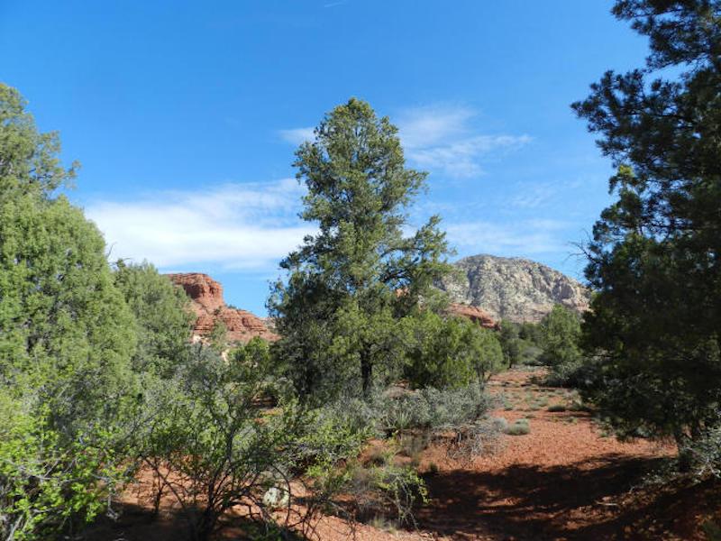 土地 のために 売買 アット Quiet Cul-de-sac Lot 110 Saddle Horse Lane Sedona, アリゾナ 86336 アメリカ合衆国