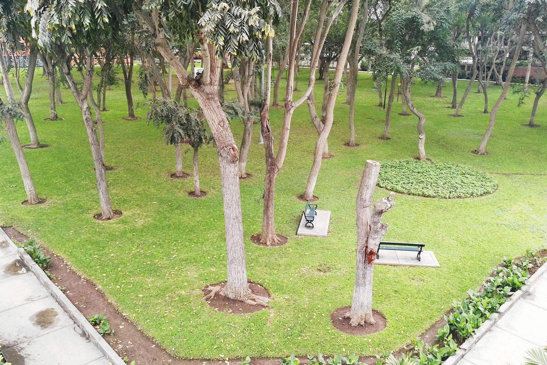 Property Of Excelente Departamento con fondo a parque, linda Vista  en San Isidro