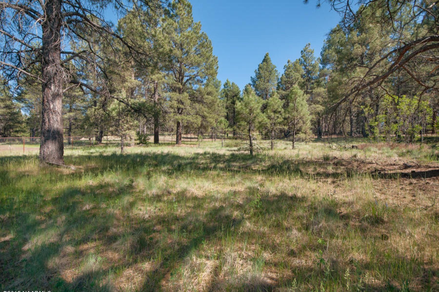 Maison unifamiliale pour l Vente à Well maintained log sided home on 2.89 Peaceful acres. 1458 Homestead RD Flagstaff, Arizona 86005 États-Unis
