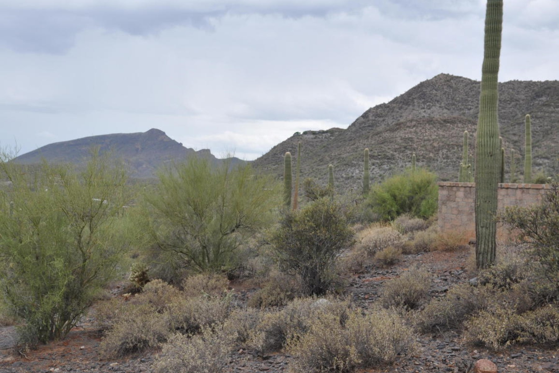Property For Sale at Dramatic views and desirable area in Canyon del Oro