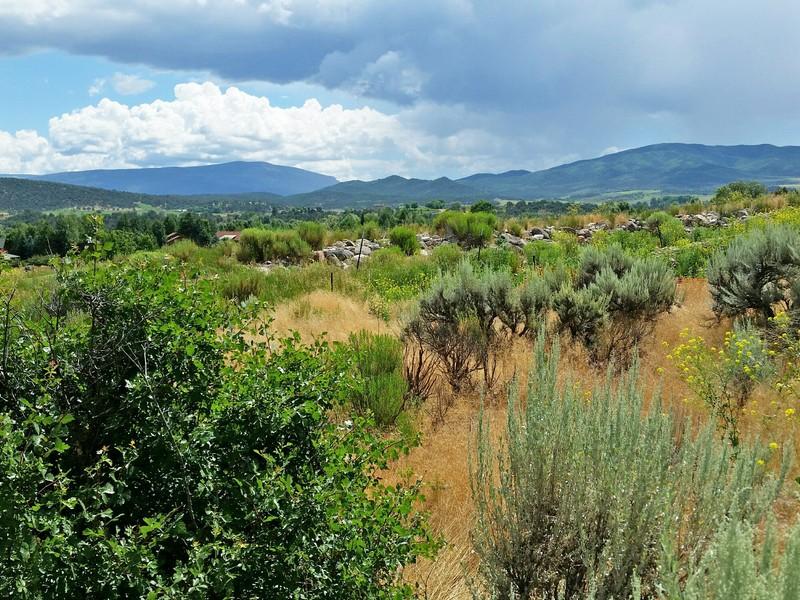 Terrain pour l Vente à River Valley Ranch 4066 Crystal Bridge Dr Carbondale, Colorado 81623 États-Unis