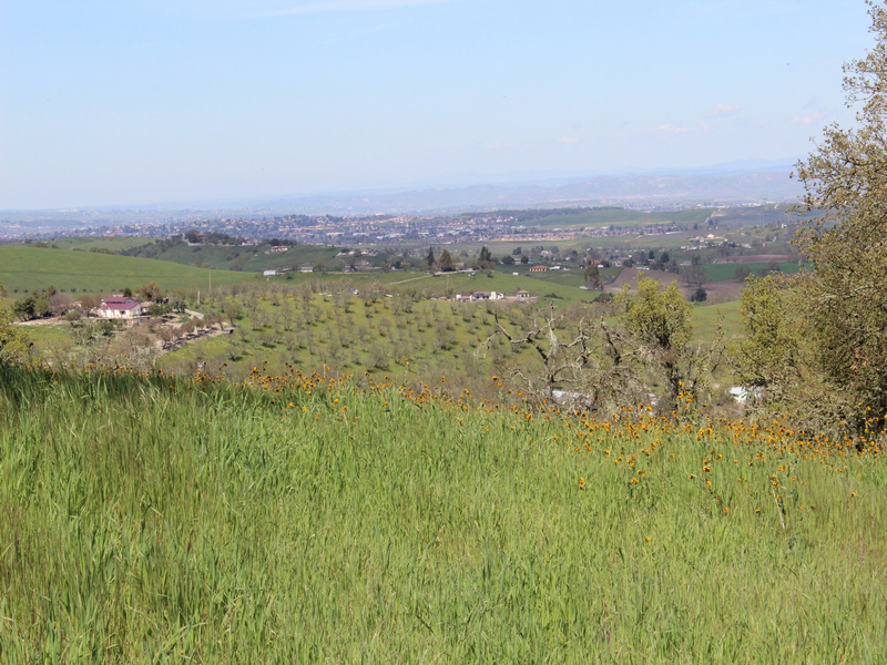 Terreno por un Venta en Impressive 10.5+- Acre Parcel with Great Views Venice Road Parcel #1 Templeton, California, 93465 Estados Unidos