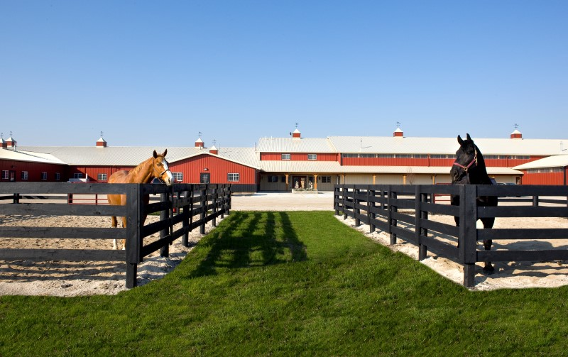 Property Of World Class Equestrian Training Facility