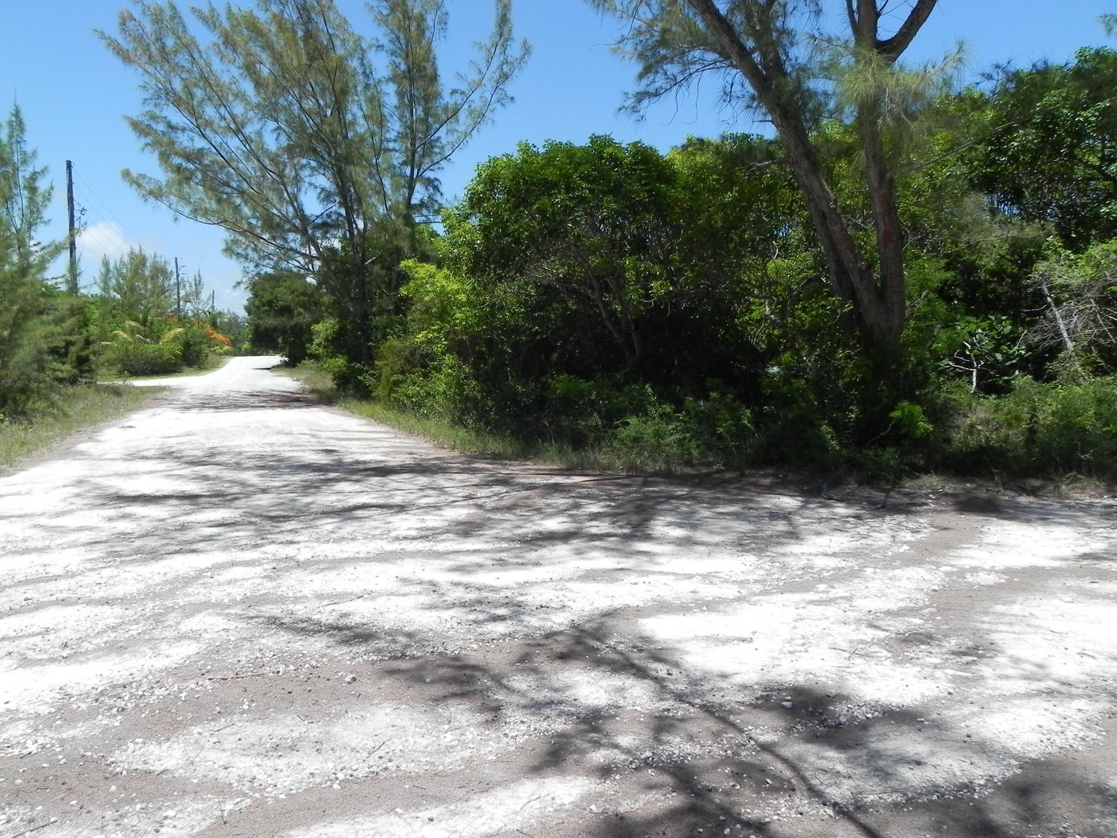 Additional photo for property listing at Bahama Palm Shores Lot 16 Bahama Palm Shores, Abaco Bahamas