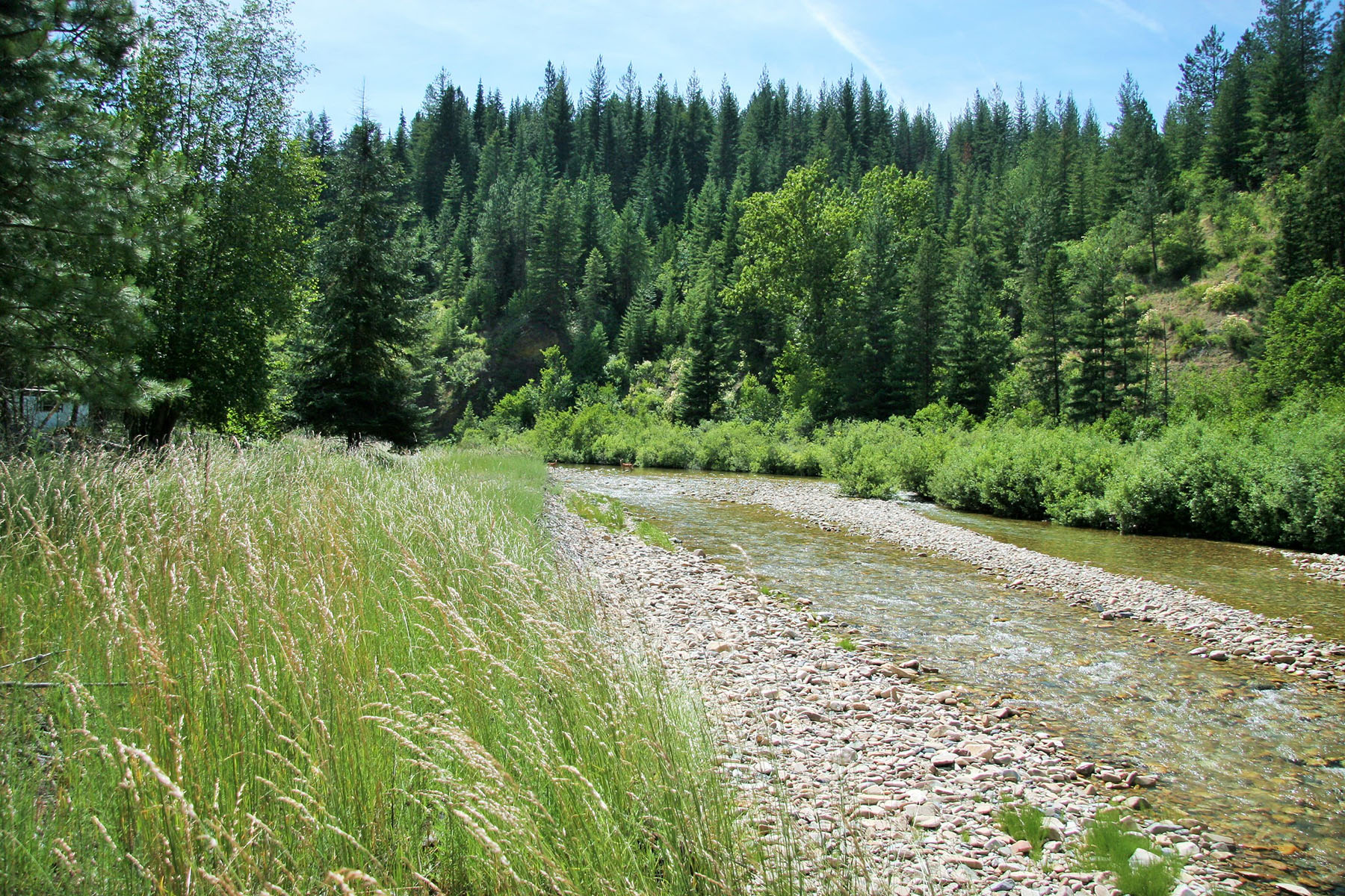 Terreno por un Venta en Appx 20 acres with over 600' of Pine Creek NNA 20 Pine Creek Rd Pinehurst, Idaho, 83850 Estados Unidos
