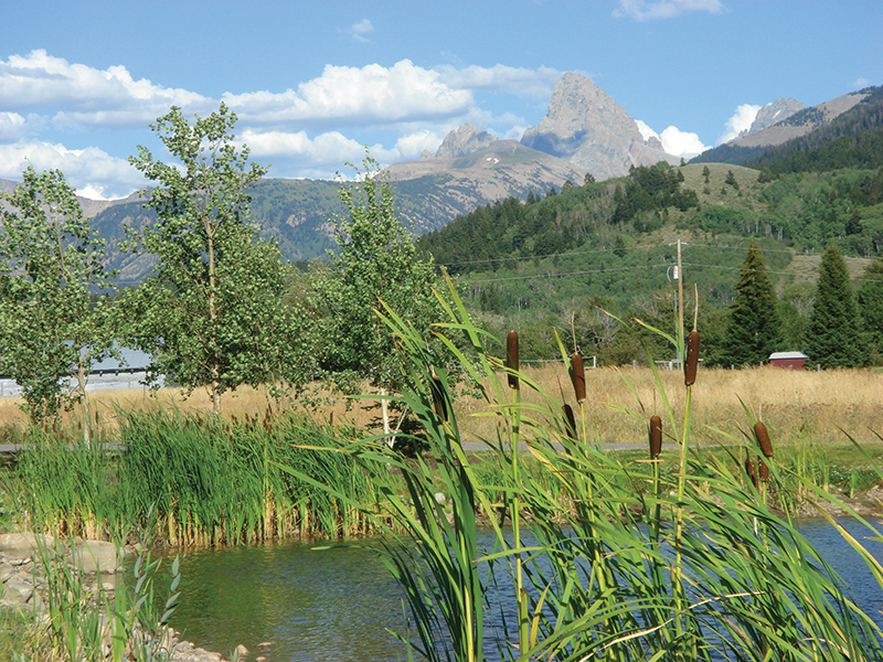 Property For Sale at Teton View Homesite