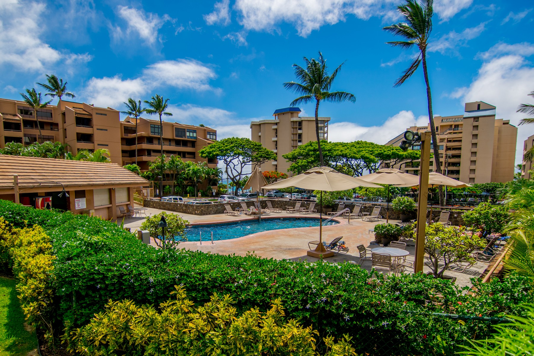 共管物業 為 出售 在 Tropical, Casual, Sandy Beach Retreat 4242 Lower Honoapiilani Road, Kahana Villa E111 Kahana, 夏威夷, 96761 美國