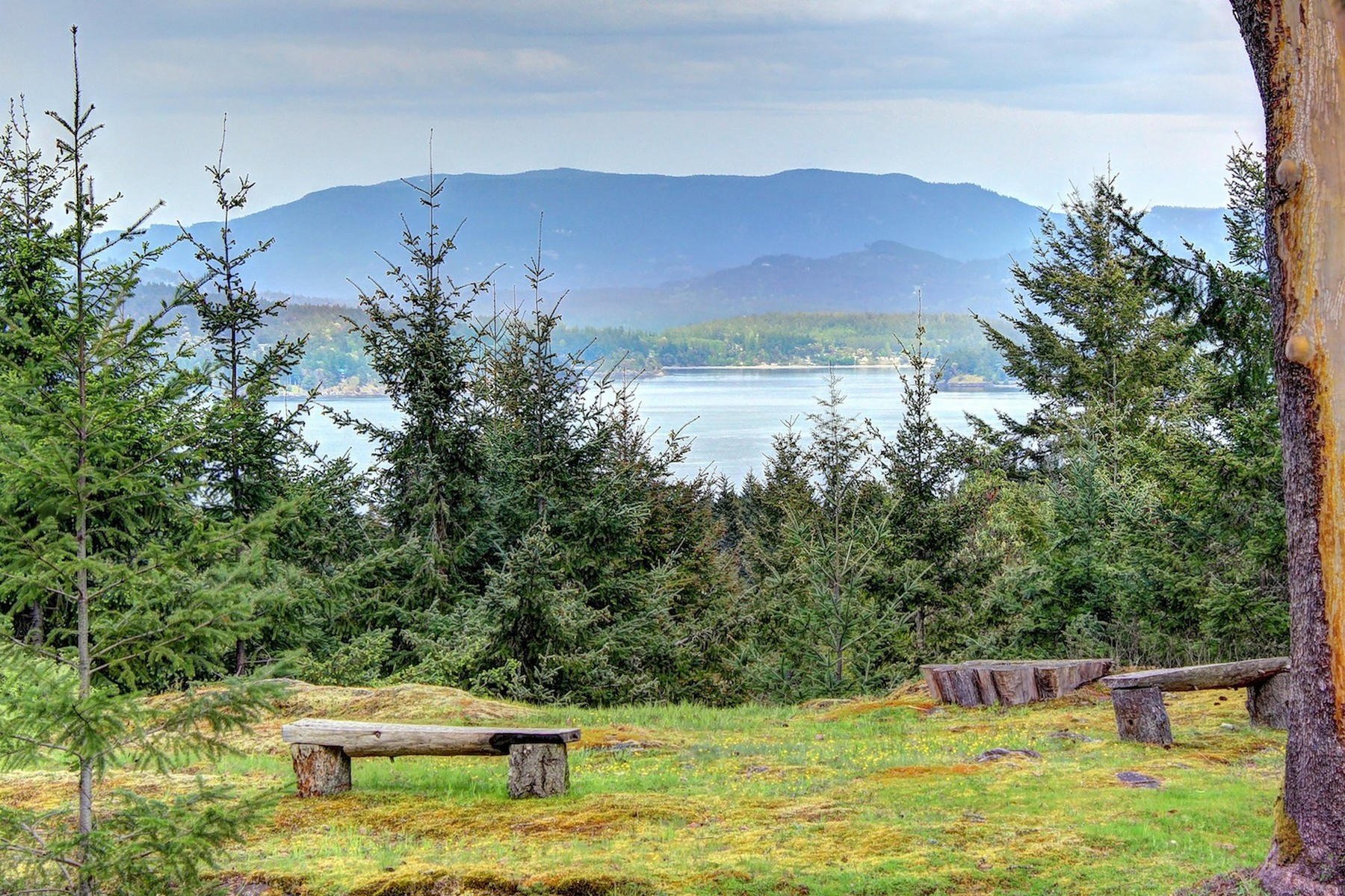 Đất đai vì Bán tại Spectacular 10 Acre Parcel with Views Dream Lake Road Friday Harbor, Washington, 98250 Hoa Kỳ