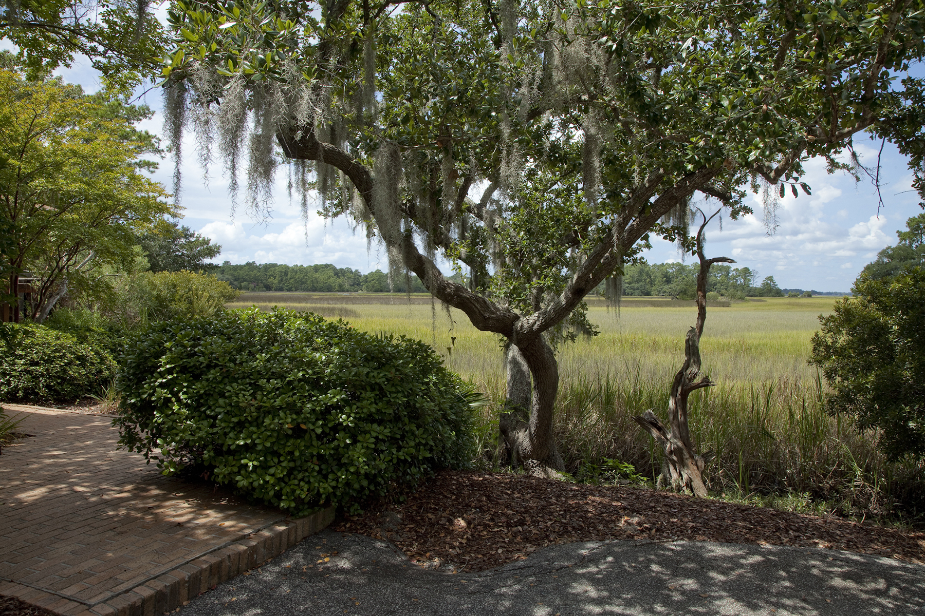 Property Of Marsh Winds