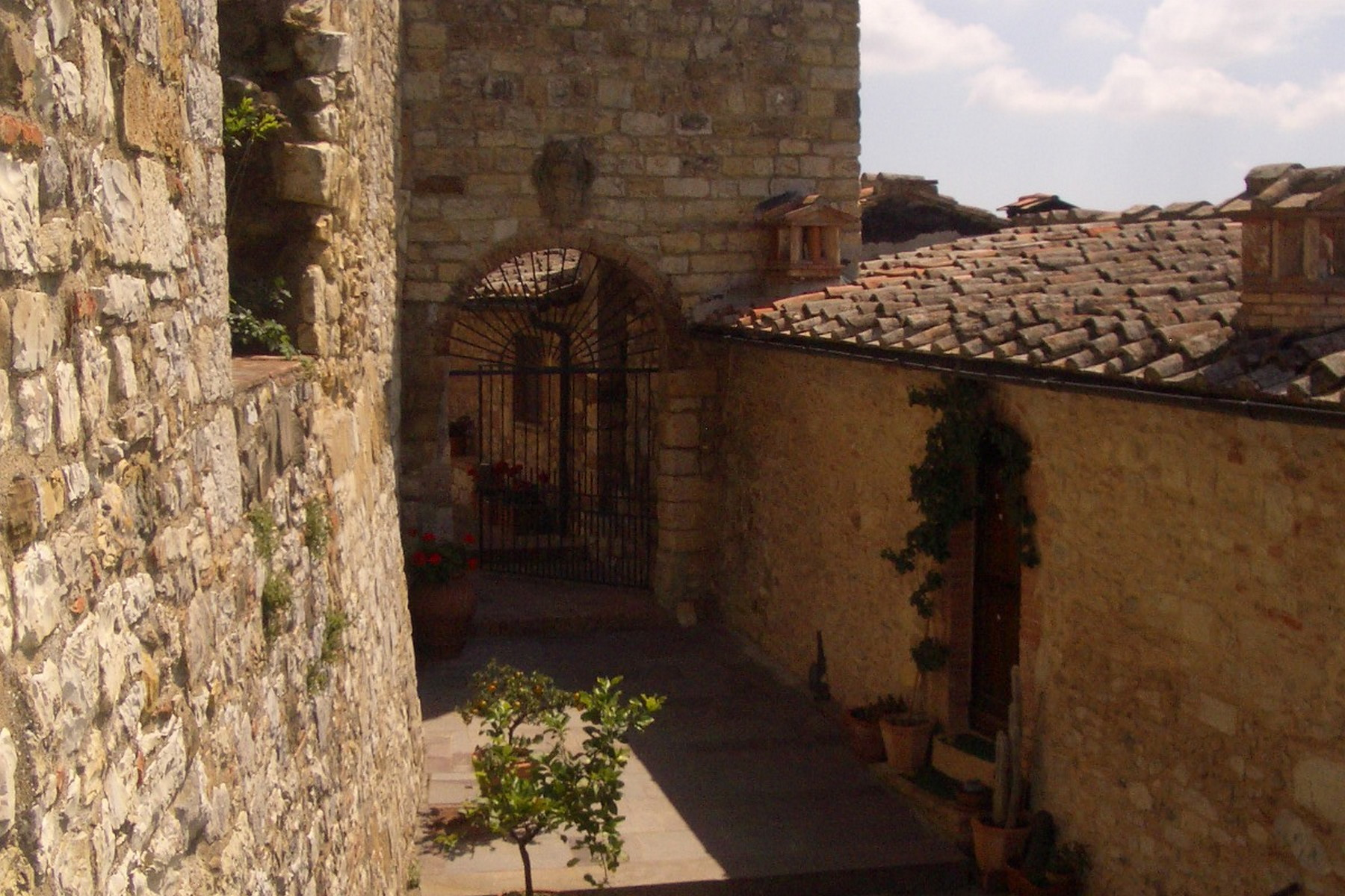 Additional photo for property listing at Historic castle in Chianti with vineyard  Gaiole In Chianti, Siena 53013 Italien