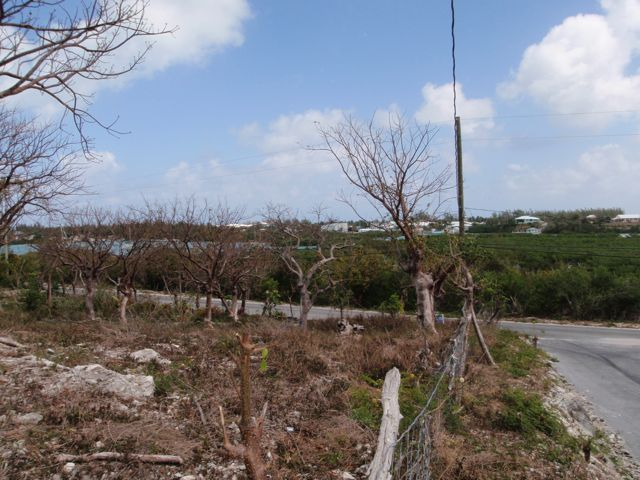 Terrain pour l Vente à Elevated Harbour View Lot Spanish Wells, Eleuthera Bahamas