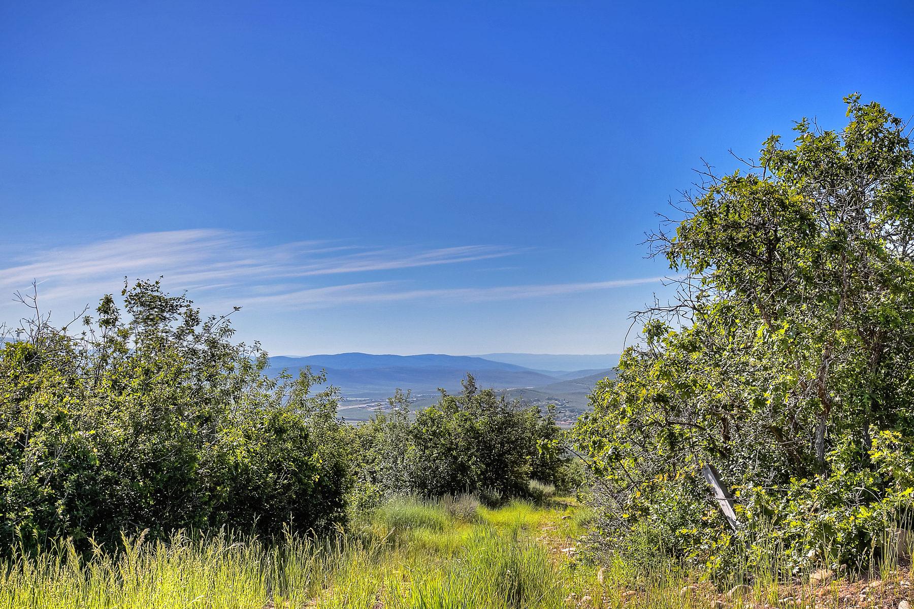 Земля для того Продажа на Spectacular Views and Trees on 10.9 AC 1595 Red Hawk Trail Park City, Юта 84098 Соединенные Штаты