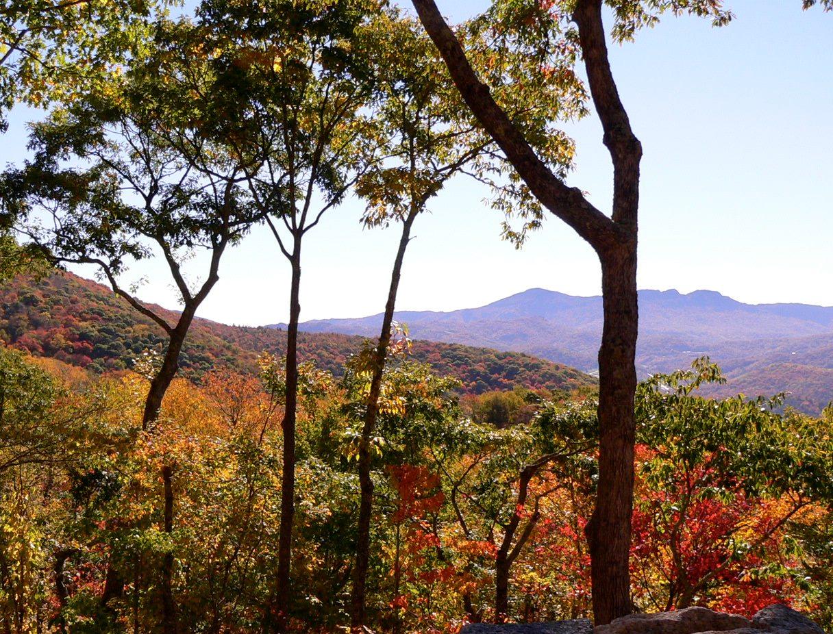 Land for Sale at Eagles Nest Lodge Homesite 13 13 Lodge Woods Trail Banner Elk, North Carolina 28604 United States
