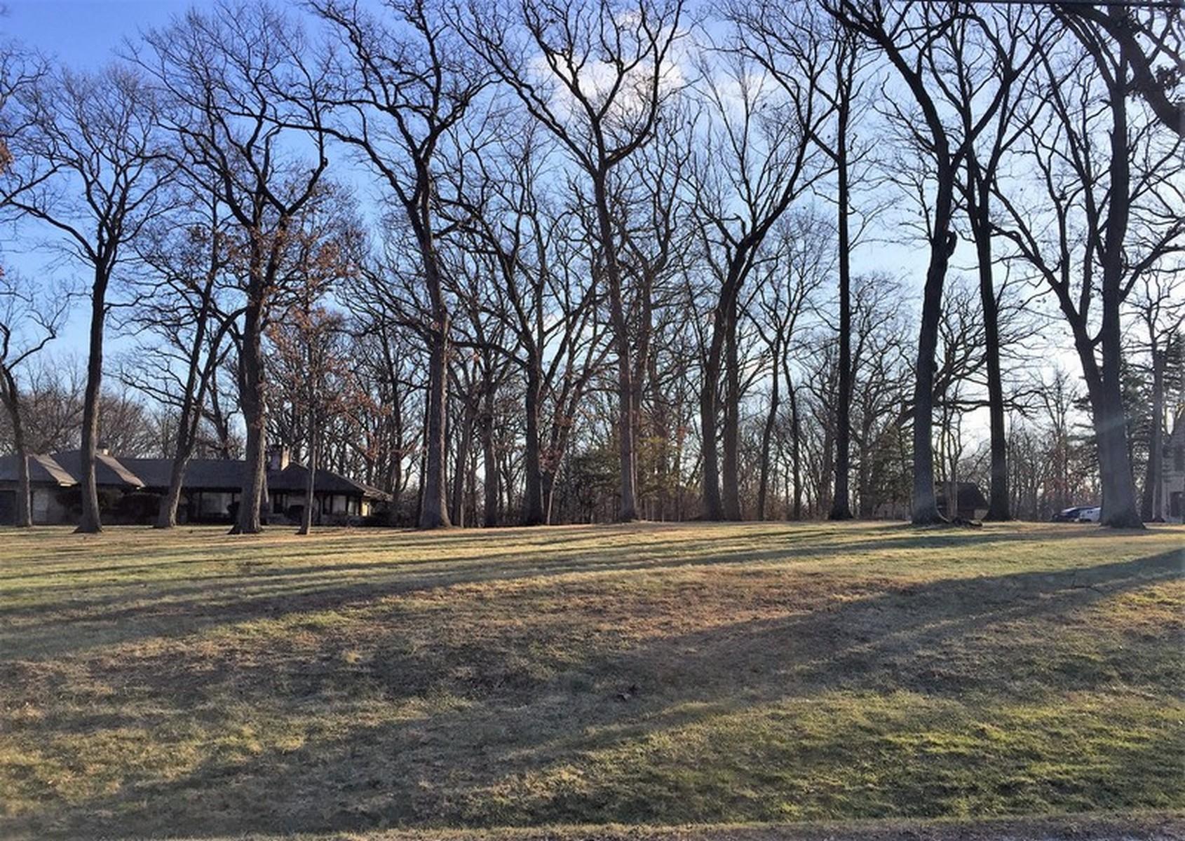 土地 为 销售 在 3601 MADISON 3601 MADISON LOT 1 橡溪镇, 伊利诺斯州, 60523 美国