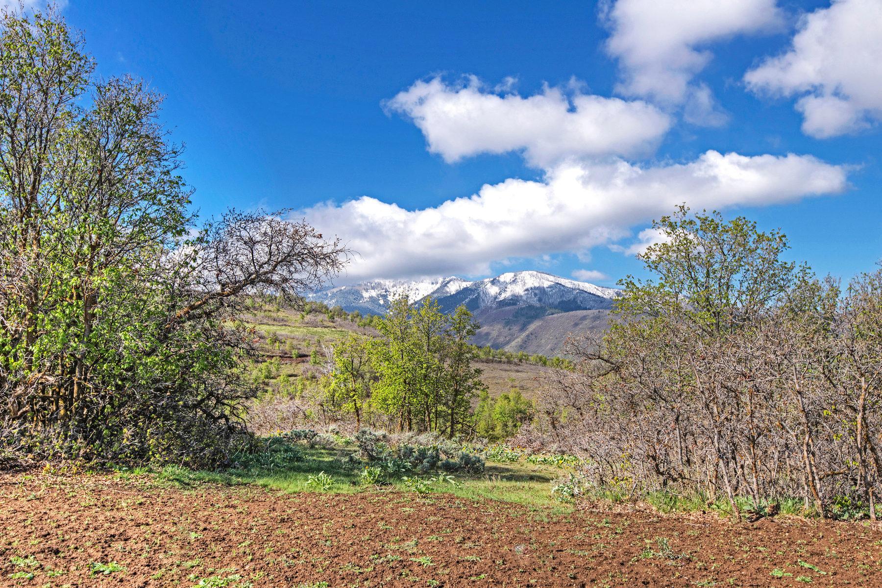 Terreno per Vendita alle ore Prime Lot in Summit Creek 748 S Summit Creek Dr Lot 20 Woodland Hills, Utah, 84653 Stati Uniti