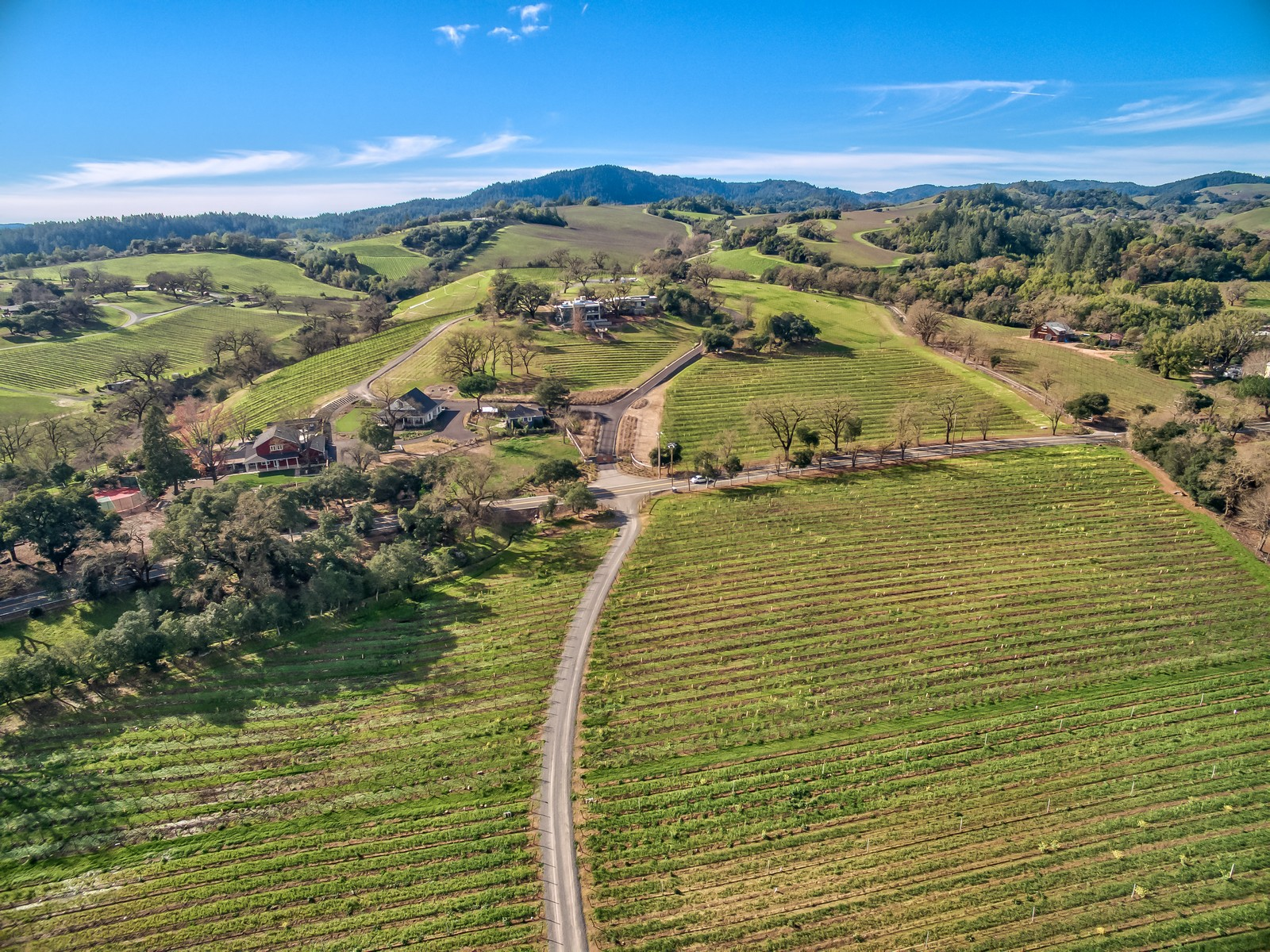 Farm / Ranch / Plantation for Active at Flax Vineyard Estate 6677 Westside Road Healdsburg, California 95448 United States