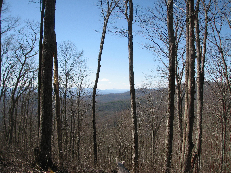 Land for Sale at The Ridges of Highlands Lot 1 Historic Highlands Drive Highlands, North Carolina, 28741 United States