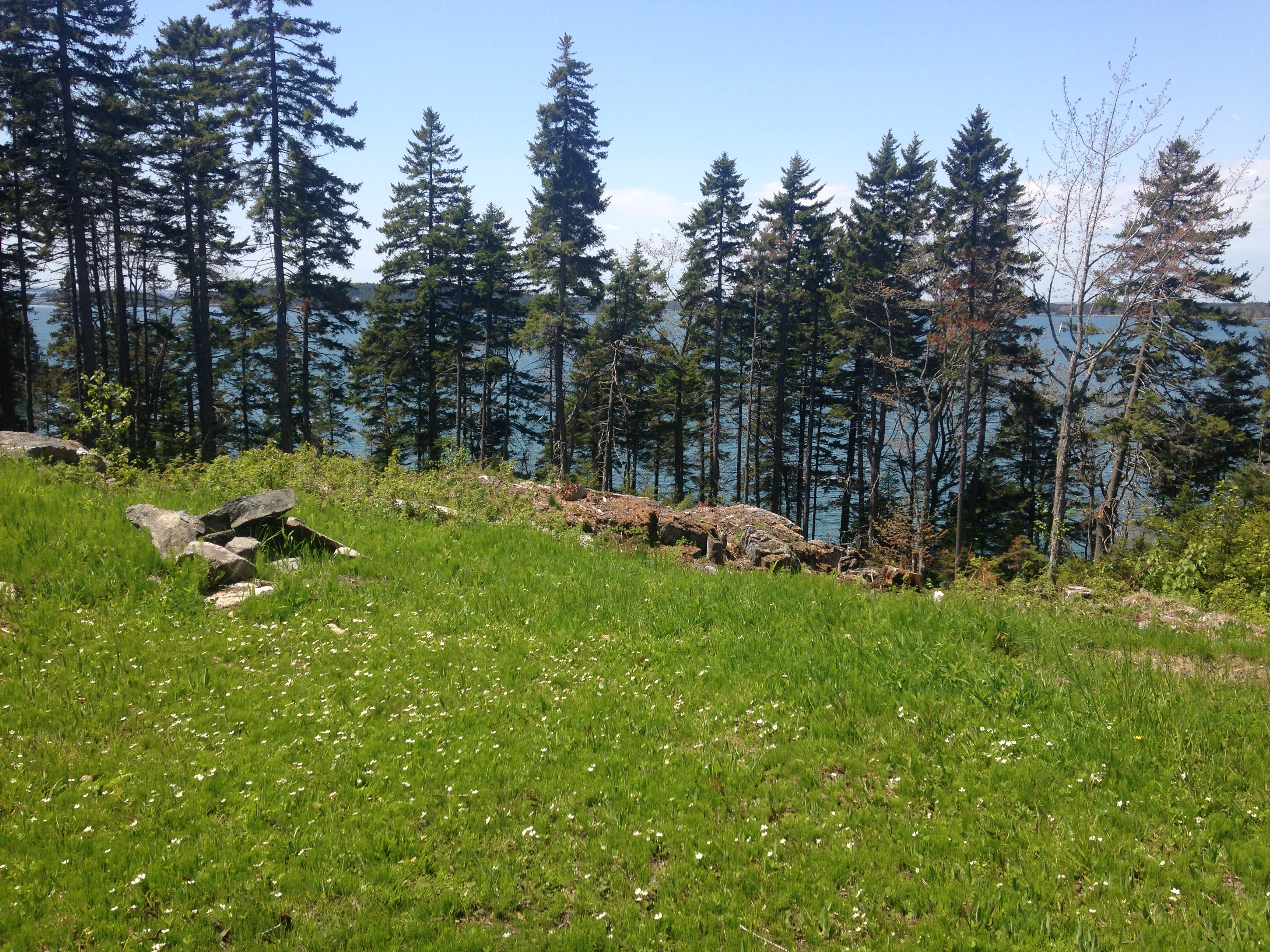 Land for Sale at Glenmere Road 265 Glenmere Road St. George, Maine 04860 United States