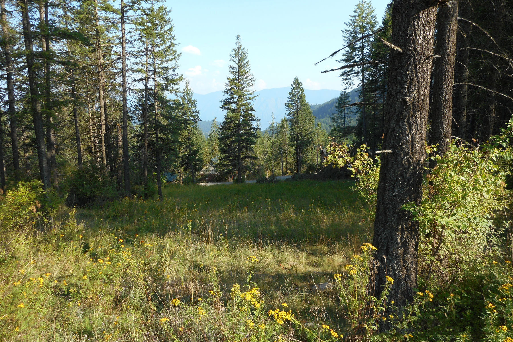 Land for Sale at Cleared Building Site Lot 6 Baylen View Estates Sagle, Idaho, 83860 United States