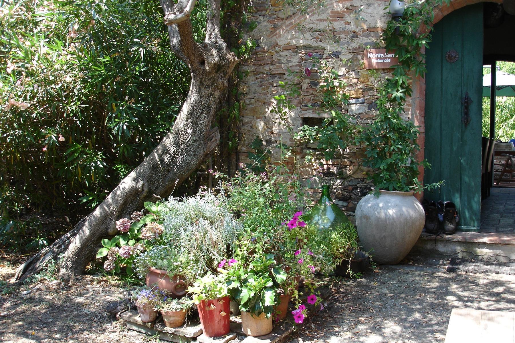 Additional photo for property listing at Antique  moulin à huile dans la campagne Toscane Via del Campaccio Buti, Pisa 56032 Italie