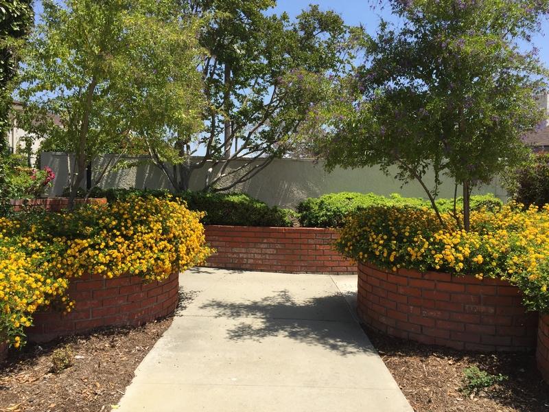 Villetta a schiera per Vendita alle ore 643 S. Indian Hill Blvd. #C Claremont, California, 91711 Stati Uniti