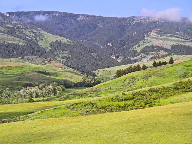 Property For Sale at Bear Claw Ranch