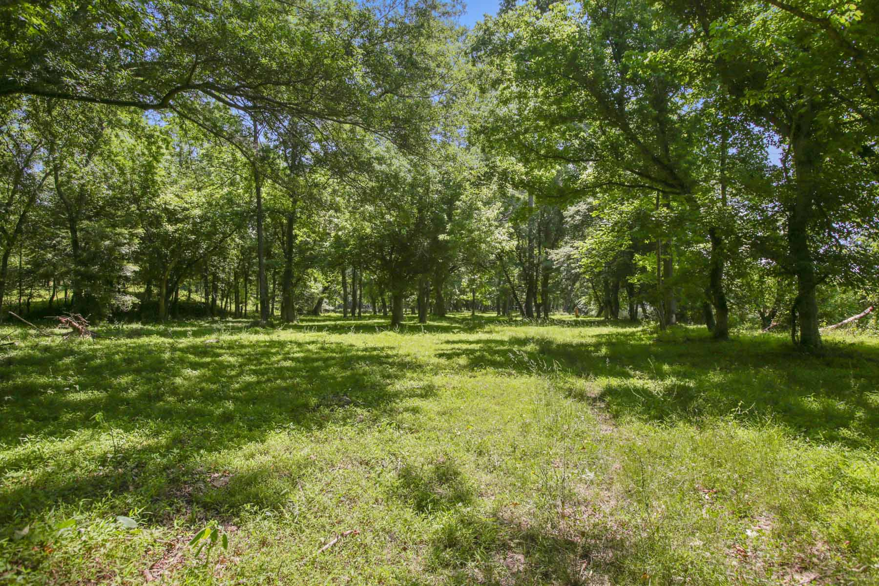 Additional photo for property listing at Rolling Pastures With Ponds and Beautiful Hardwoods 7770 Jones Ferry Road Chattahoochee Hills, Georgien 30268 Usa